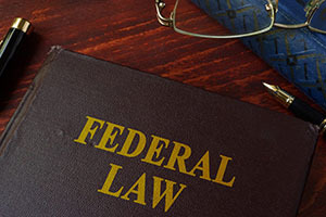 Federal Charges for False, Fictitious, or Fraudulent Claims