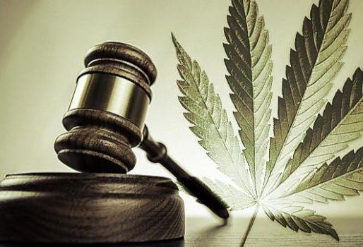 Gavel and Cannabis Leaf Photo