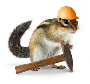 bigstock-Chipmunk-Builder-Reconstructi-50053373