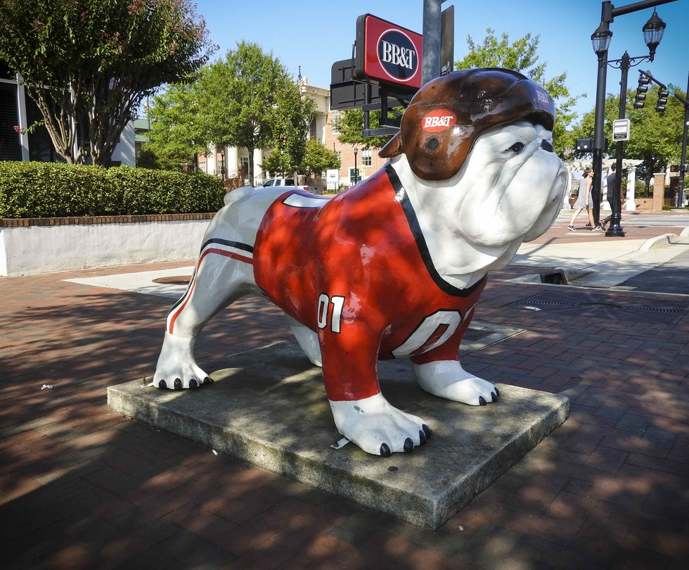Georgia 20bulldog