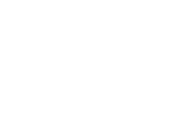 Arizona Minority Bar Organization