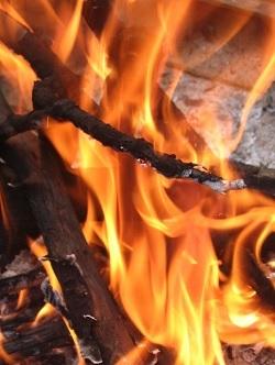 Arson pc 451