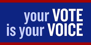 Voice 20vote