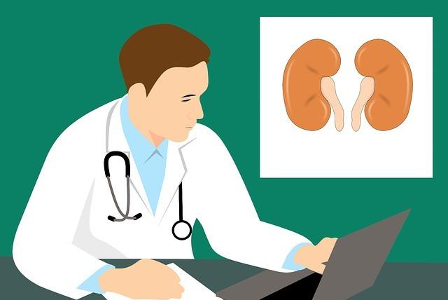Kidney doctor