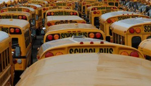 School buses 300x172