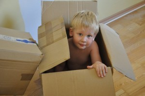 Child custody relocation cases 300x199