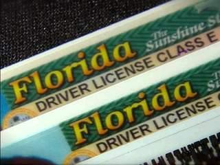 Fl 20drivers 20license 20pic