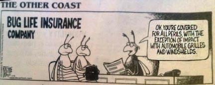 Buglifeinsurance