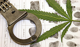 Chargedwithmarijuana