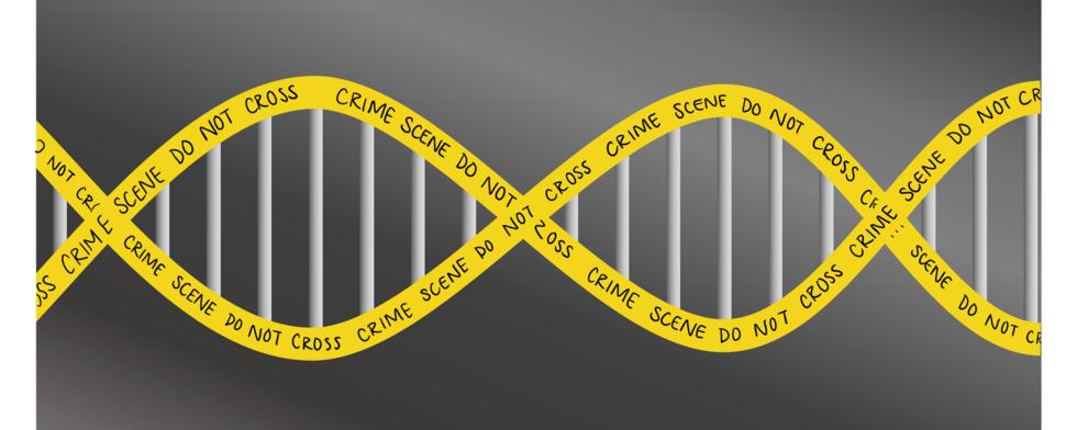Sitn forensics cover