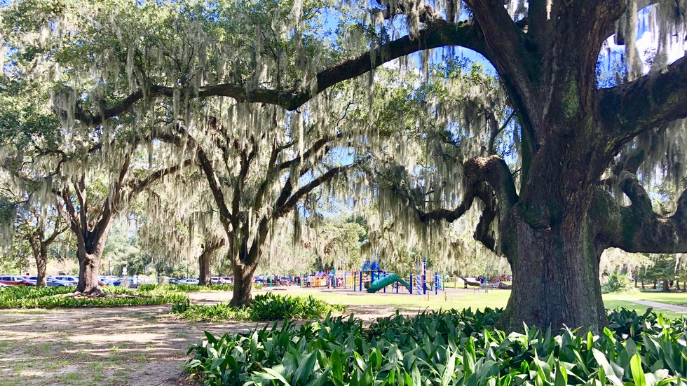 City Park, New Orleans, Louisiana