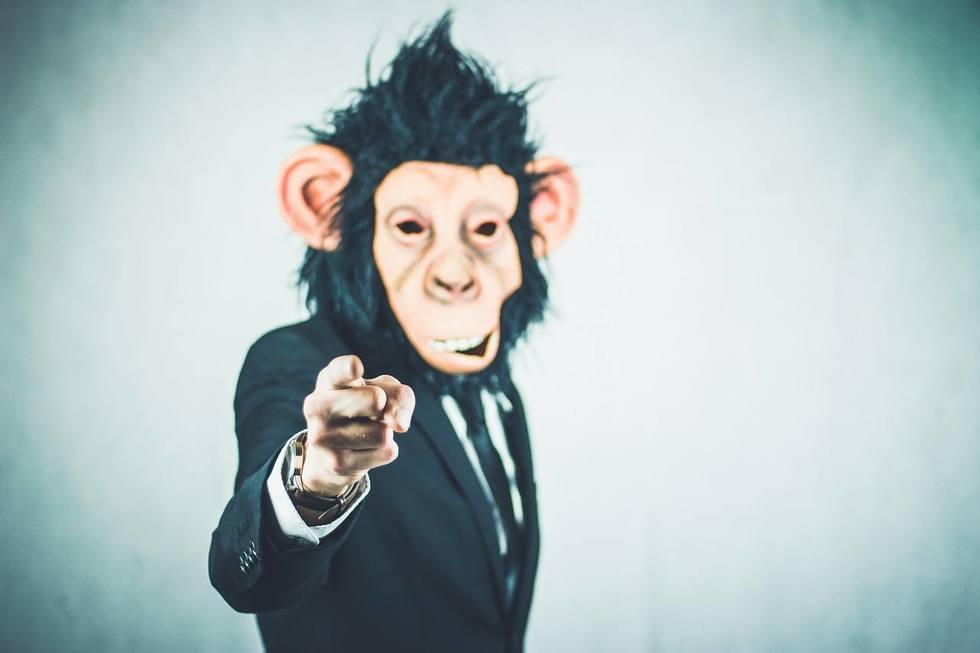 Monkey 2710657 1280