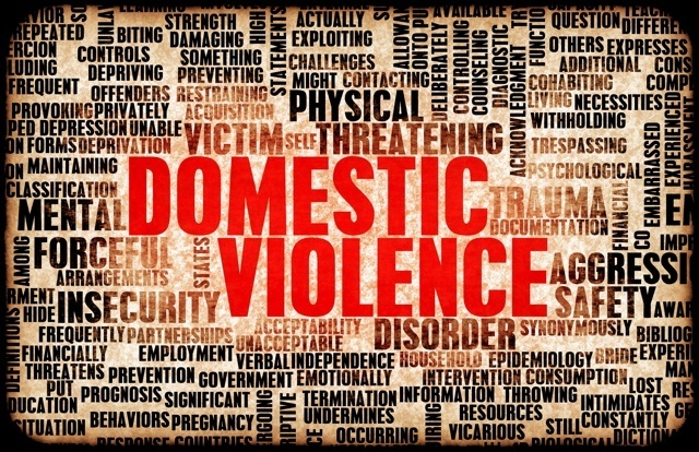 Florida domestic violence stats