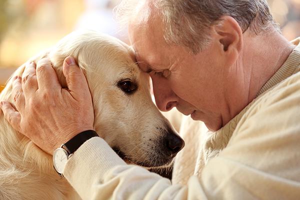 Senior and pet