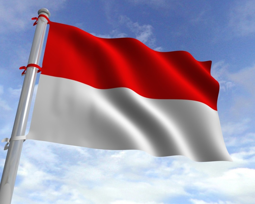 Flag indonesia static