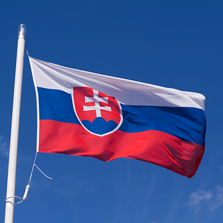 Slovakiaflagpicture2