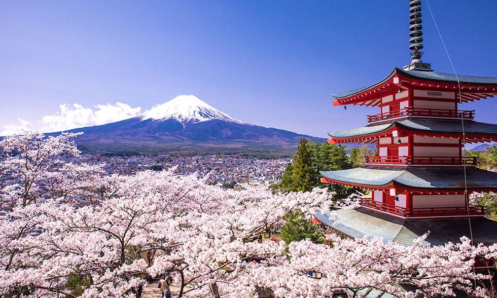Japan 202