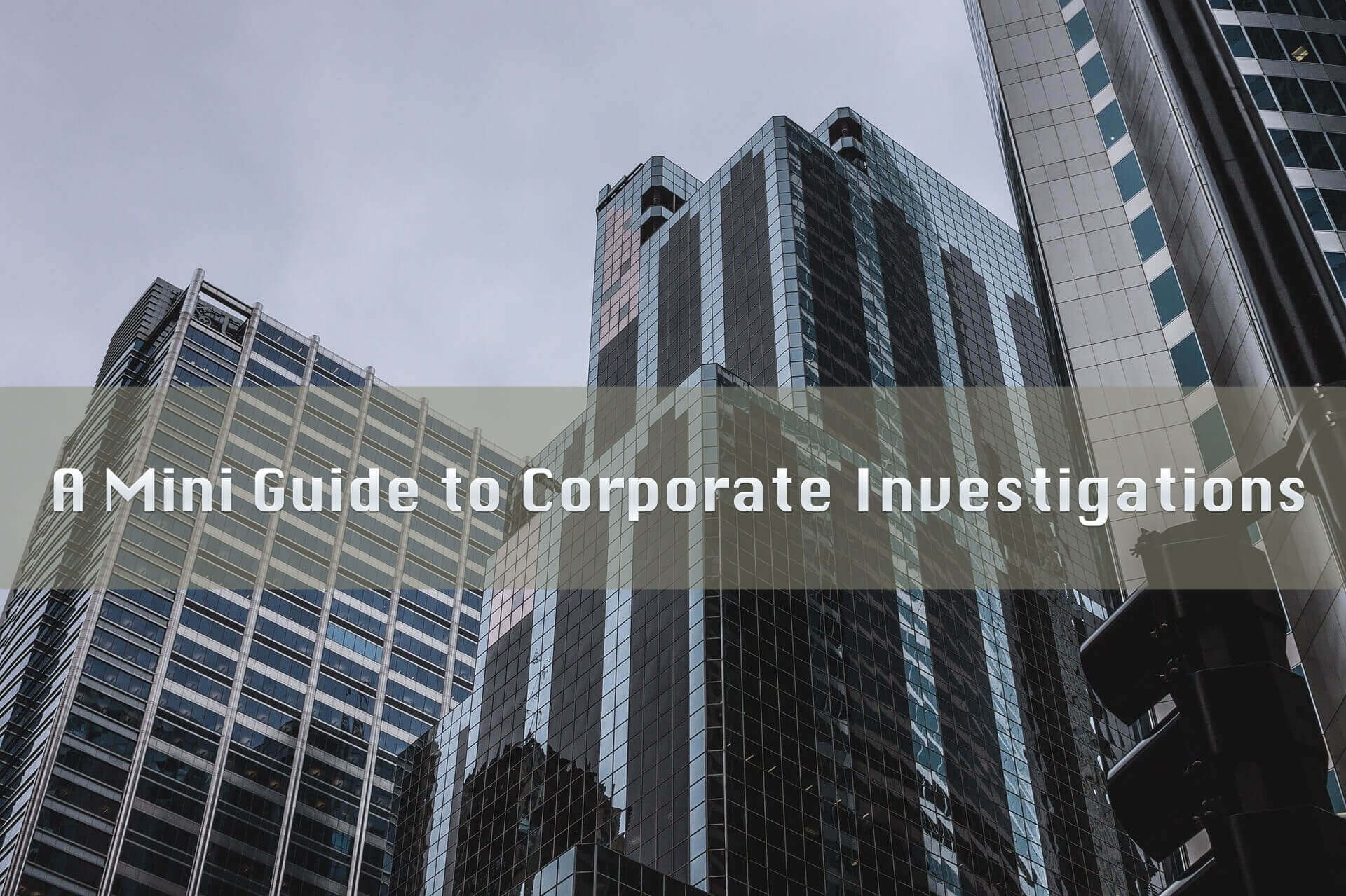 Mini Guide to Corporate Investigations Graphic