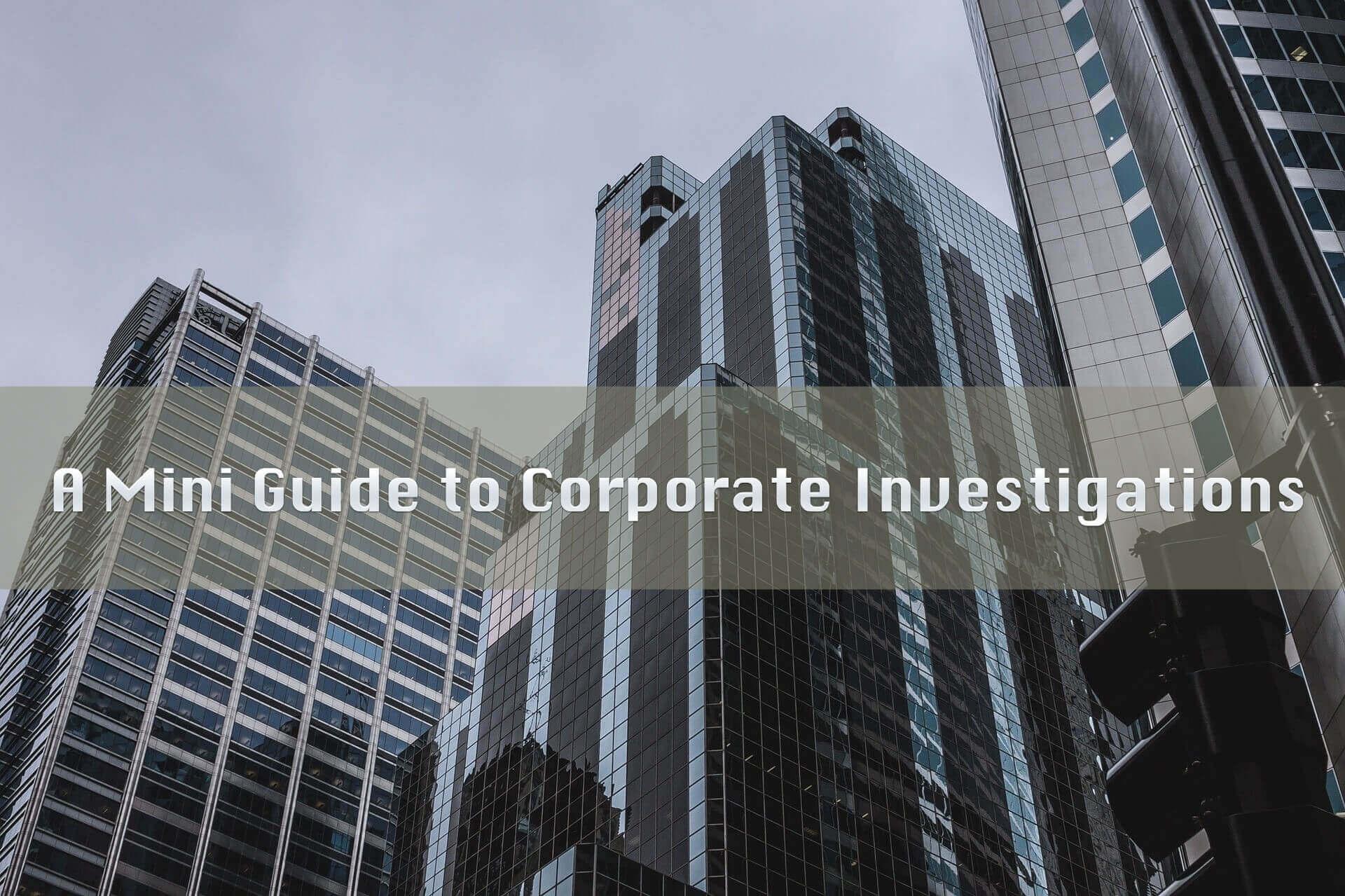 Mini Guide to Corporate Investigations Graphic