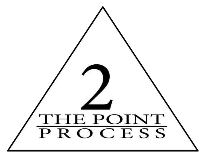 2 The Point Process Logo