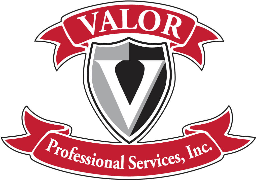 Valor Professional Services, Inc logo
