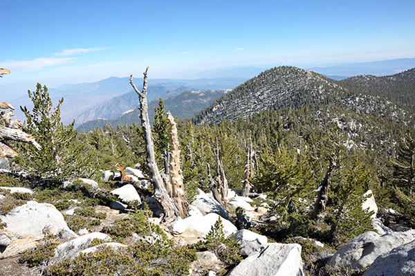 Picture of Mount San Jacinto