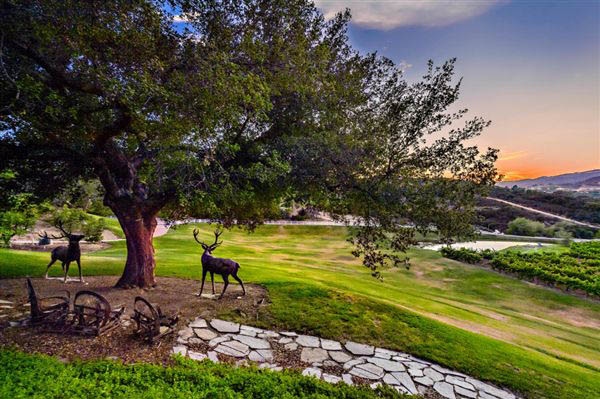 Beautiful backyard of Murrieta Home