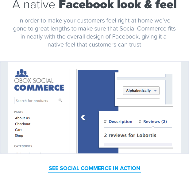 Social Commerce - WooCommerce Facebook Tab 4