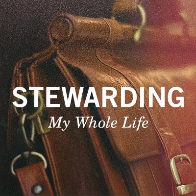 Stewarding My Whole Life
