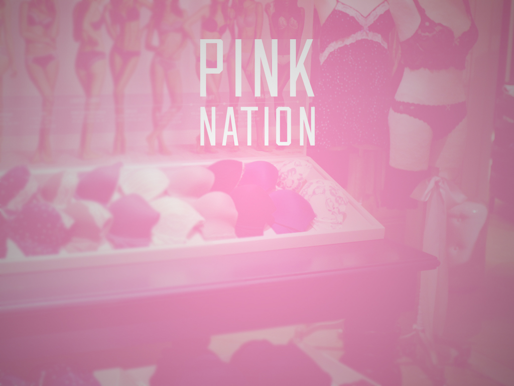 65cefb7b75d Victoria s Secret Adds Chat to PINK Nation App To Target Millennials ...
