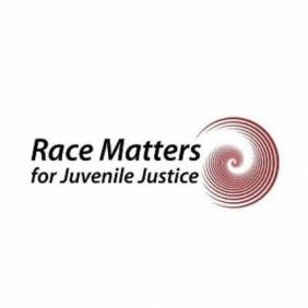 Leading on Opportunity Participates In Race Matters for Juvenile Justice Racial Equity Workshop