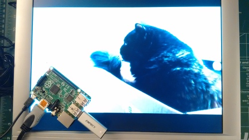 Raspberry Pi Video Looper