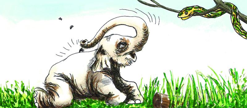 Golu Grows a Nose - NCERT - Class 7 - English   Learnapt