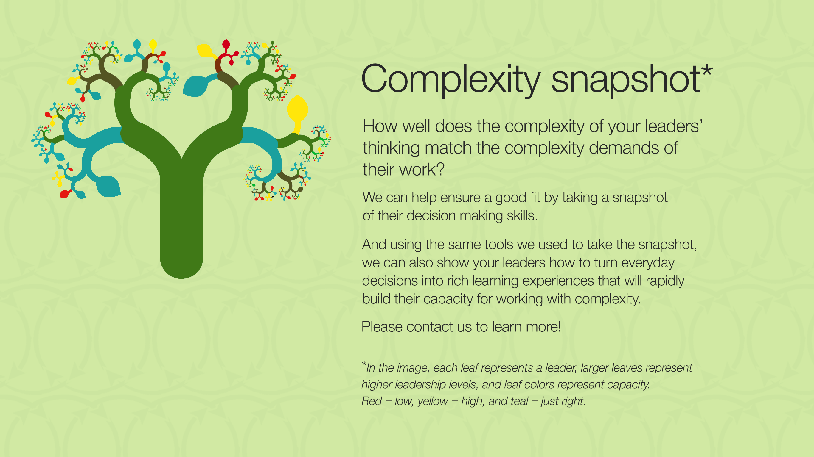 Complexity snapshot