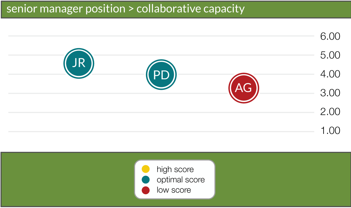 collaborative capacity scale