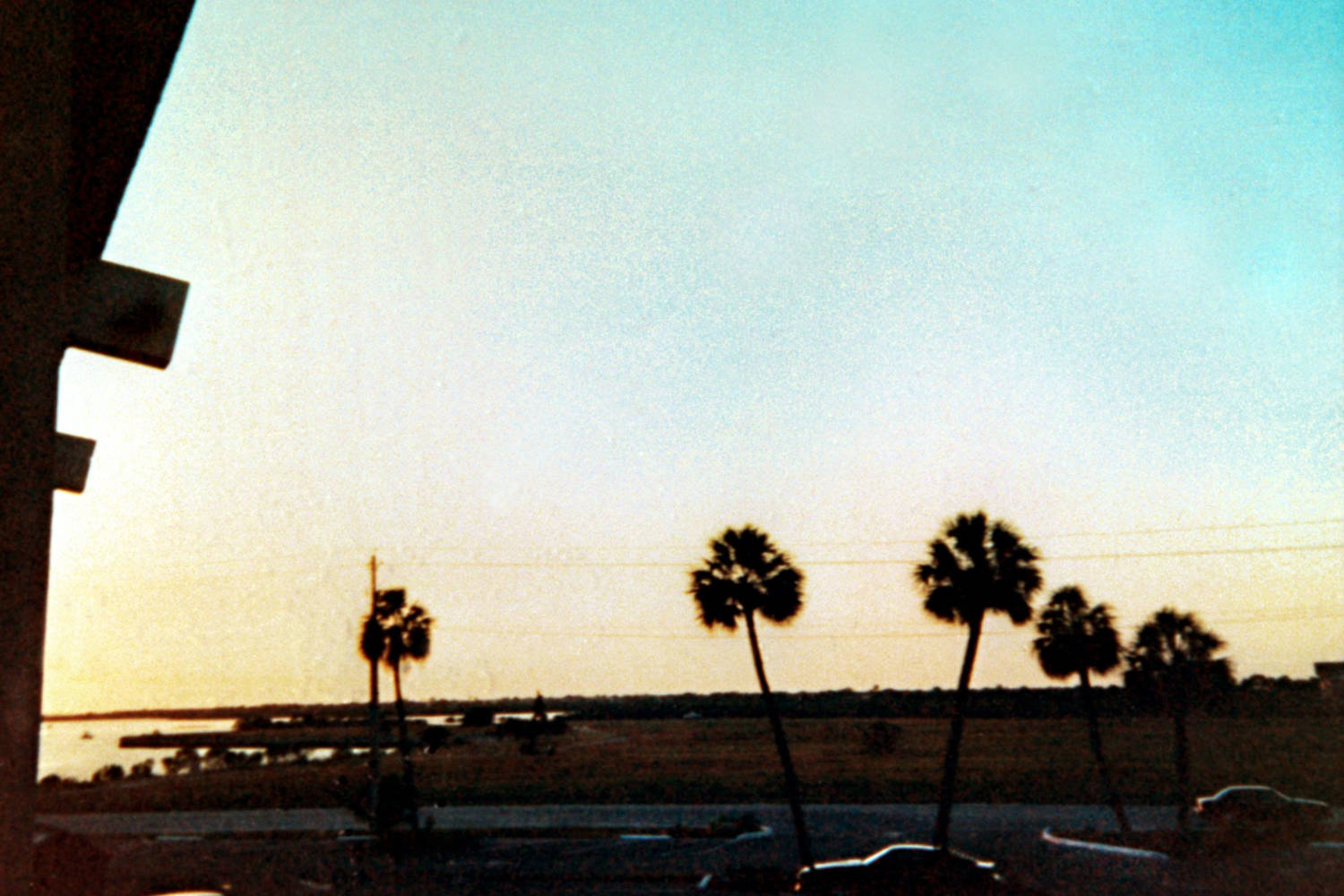 Sunset over the horizon, with scattered palm trees in the foreground.