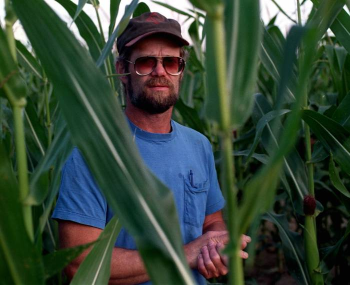 A man wearing a trucker hat standing in a field of cornstalks.