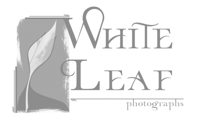 White Leaf Photographs logo