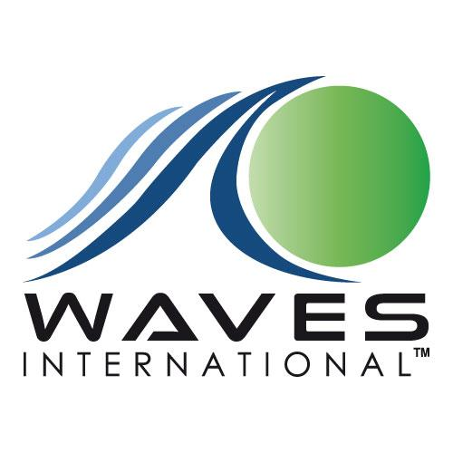 WAVES for Development International logo