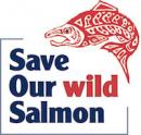 Save Our Wild Salmon logo