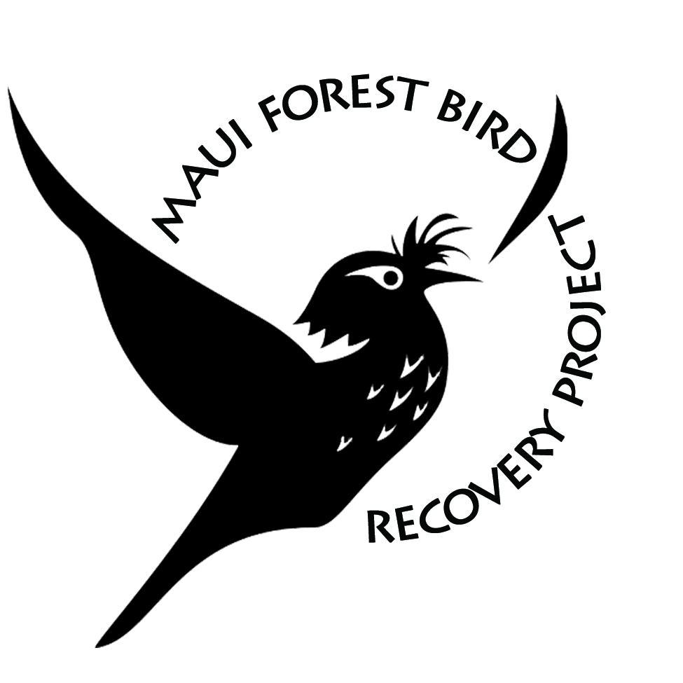 Maui Forest Bird Recovery Project c/o Na Koa Manu Conservation logo