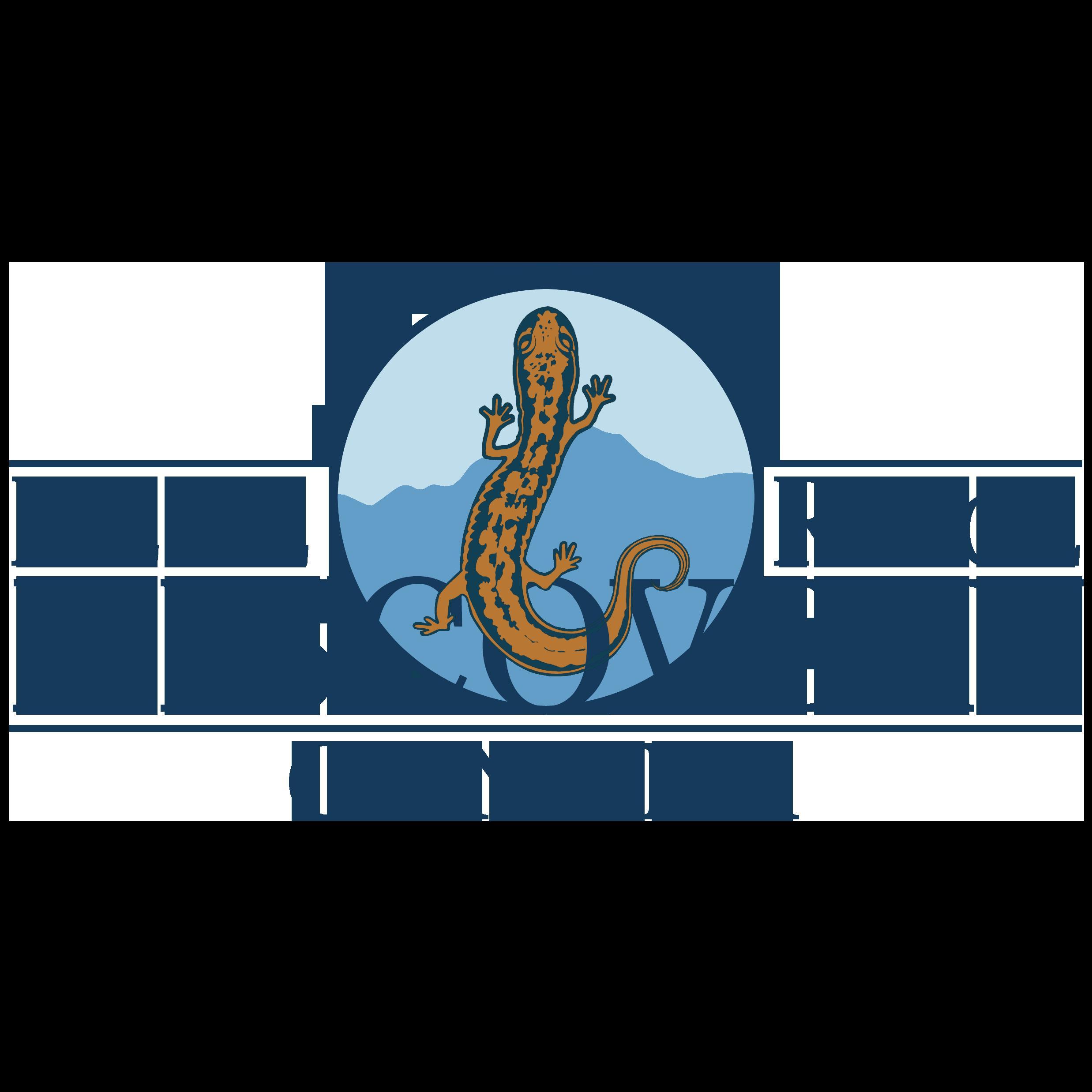 Blue Ridge Discovery Center logo