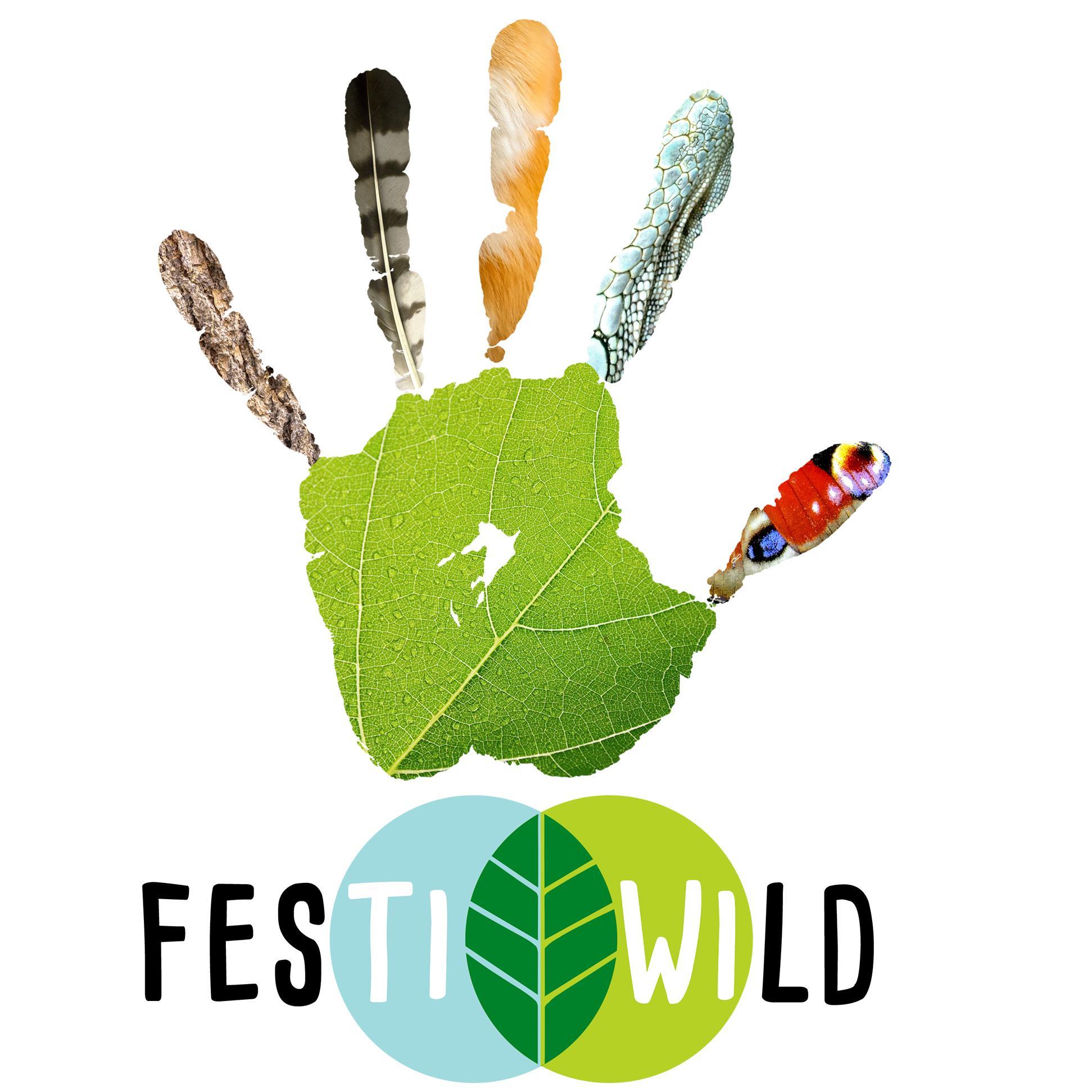 Festiwild logo