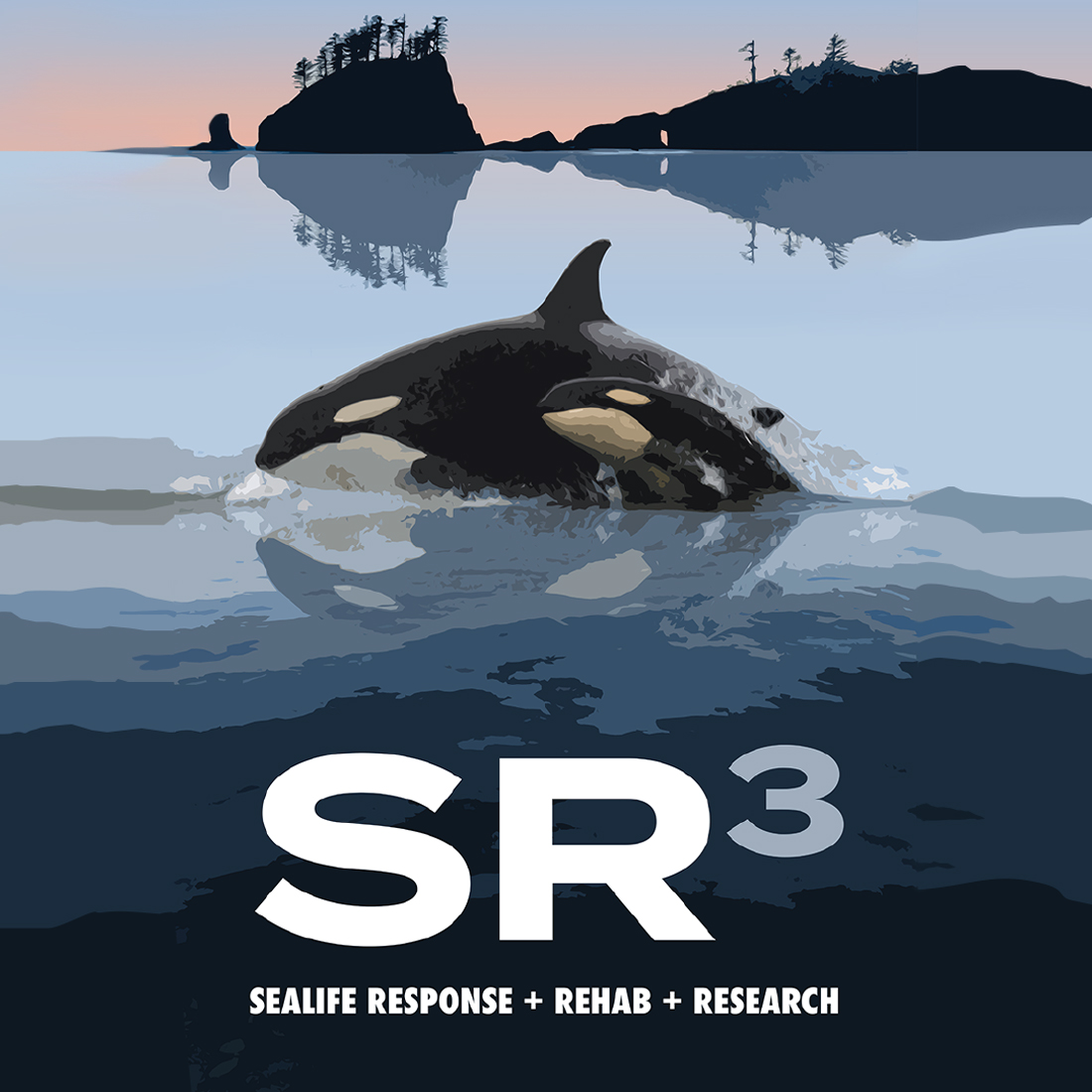 SR3 (Sealife Response, Rehabilitation and Research) logo