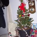 The tiny Christmas tree my husband Jon brought me.