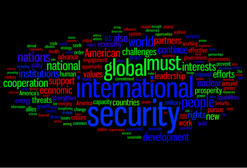 NSS word cloud