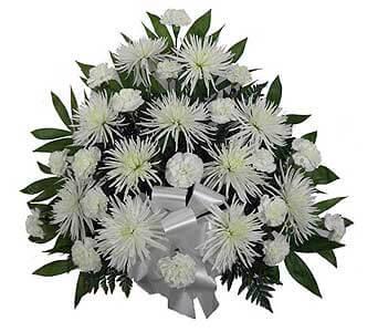 Basket K: Spider Mums, Carnations