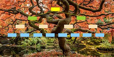 Connaissez-vous l'arbre de Merkle ?