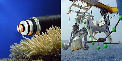 Câbles sous-marins : quand l'Afrique s'éveille…