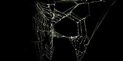 Les eaux troubles du « darkweb »